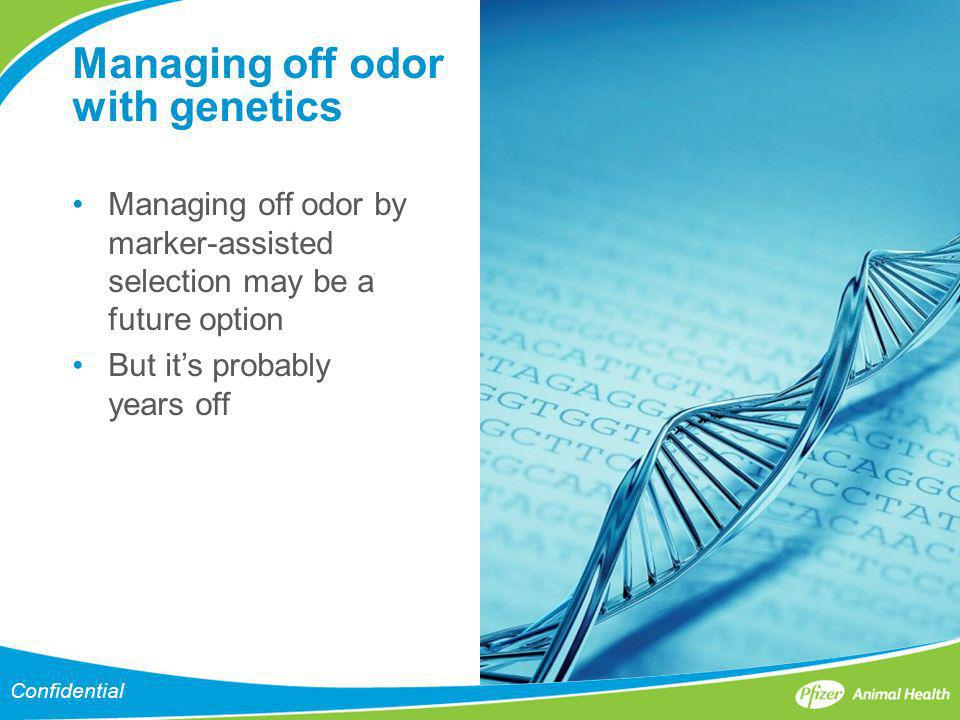 Managing off odor with genetics Managing off odor by marker-assisted selection may be a future option But its probably years off Confidential