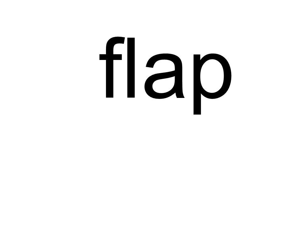 fl ap