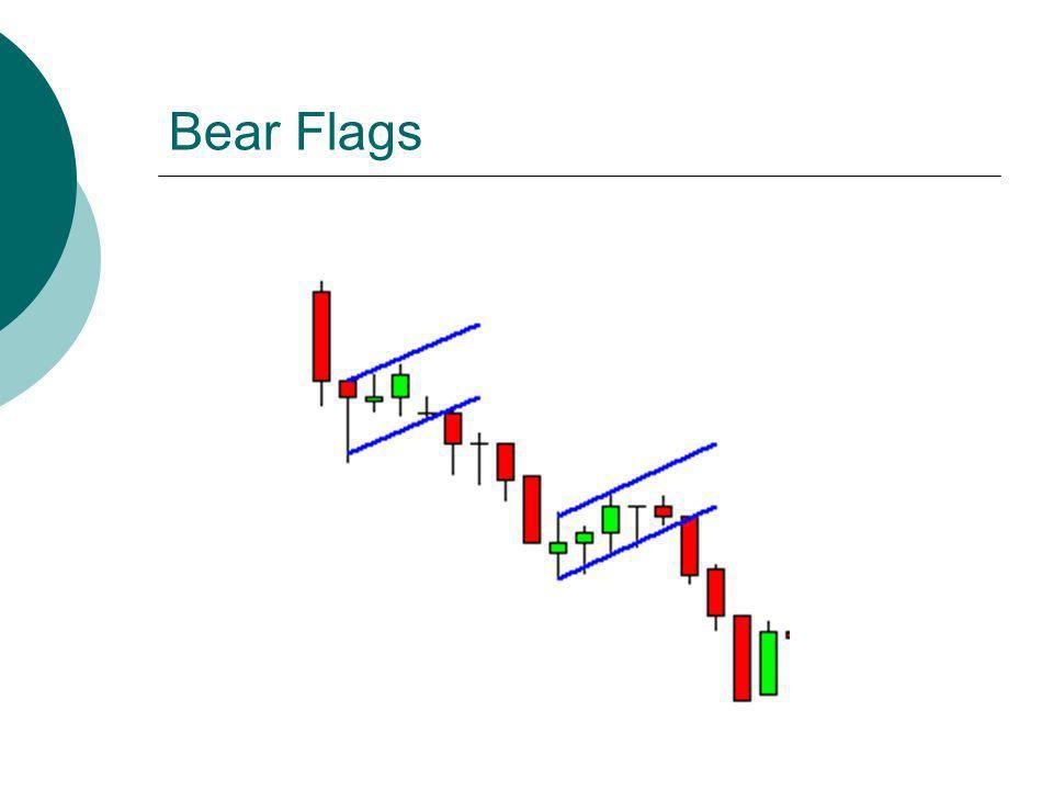 Bear Flags