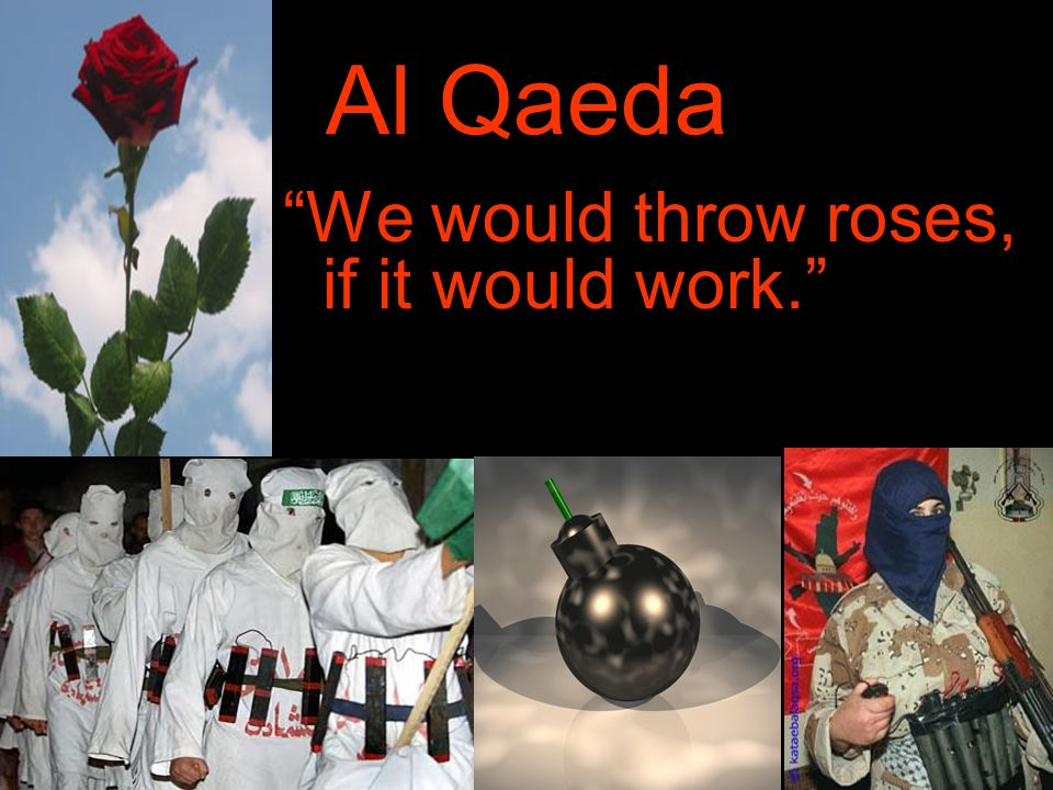 Al Qaeda We would throw roses, if it would work.