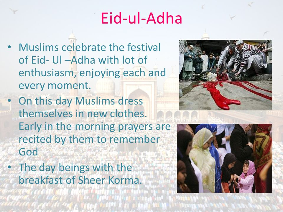 Eid-ul-Adha Muslims celebrate the festival of Eid- Ul –Adha with lot of enthusiasm, enjoying each and every moment. On this day Muslims dress themselv