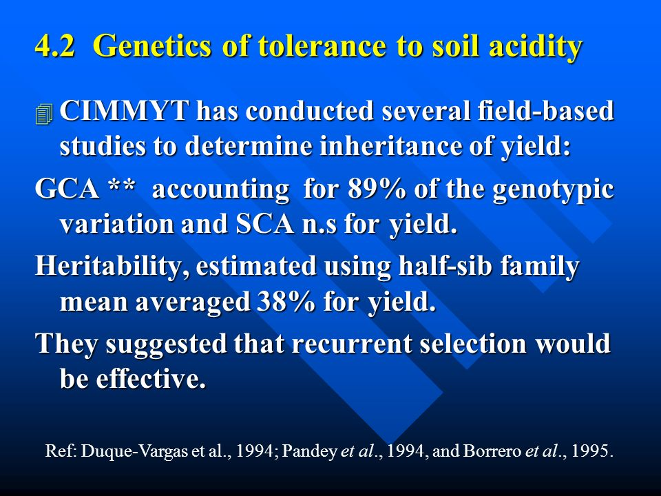 4.2 Genetics of tolerance to soil acidity 4 CIMMYT has conducted several field-based studies to determine inheritance of yield: GCA ** accounting for 89% of the genotypic variation and SCA n.s for yield.