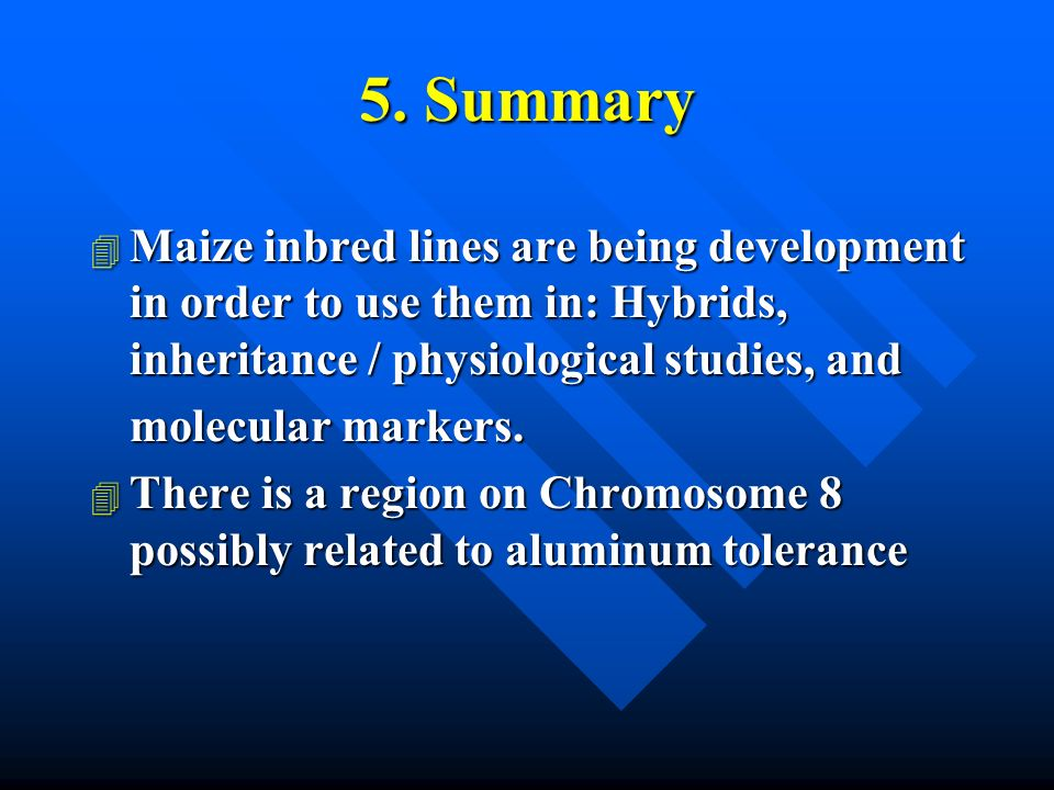 5. Summary 4 Maize inbred lines are being development in order to use them in: Hybrids, inheritance / physiological studies, and molecular markers. 4