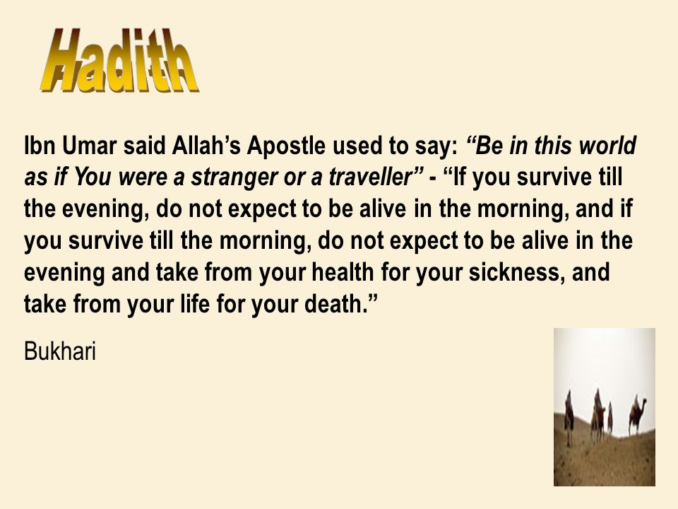 Ibn Umar said Allahs Apostle used to say: Be in this world as if You were a stranger or a traveller - If you survive till the evening, do not expect t