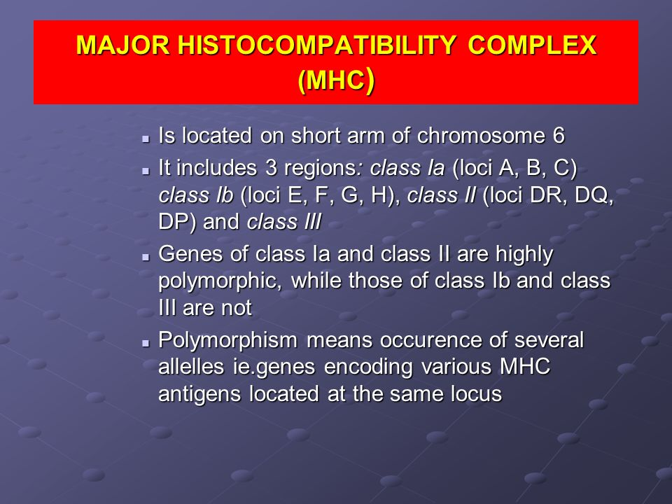 MAJOR HISTOCOMPATIBILITY COMPLEX (MHC ) Is located on short arm of chromosome 6 Is located on short arm of chromosome 6 It includes 3 regions: class I