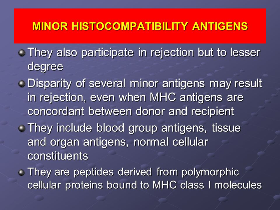 MINOR HISTOCOMPATIBILITY ANTIGENS They also participate in rejection but to lesser degree Disparity of several minor antigens may result in rejection,