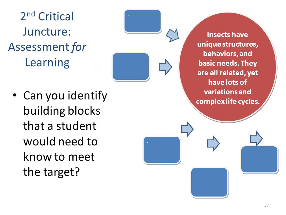 2 nd Critical Juncture: Assessment for Learning Can you identify building blocks that a student would need to know to meet the target?.... Insects hav