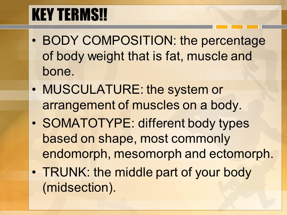 KEY TERMS!! BODY COMPOSITION: the percentage of body weight that is fat, muscle and bone. MUSCULATURE: the system or arrangement of muscles on a body.