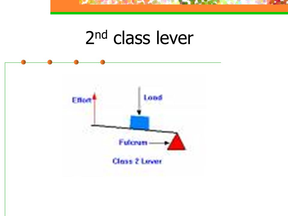2 nd class lever