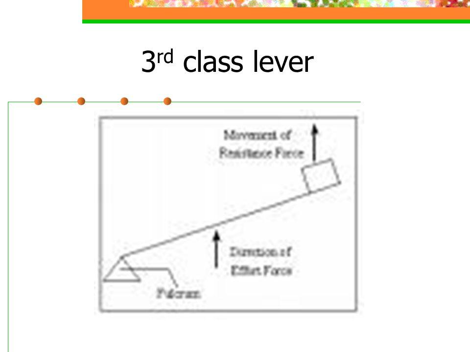 3 rd class lever