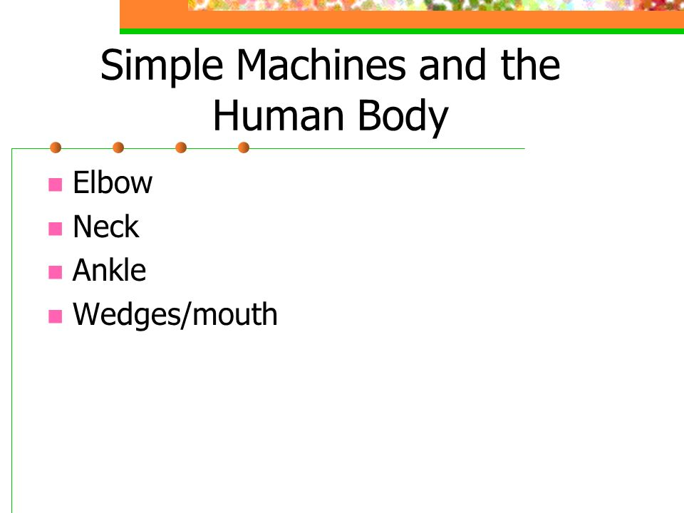 Simple Machines and the Human Body Elbow Neck Ankle Wedges/mouth