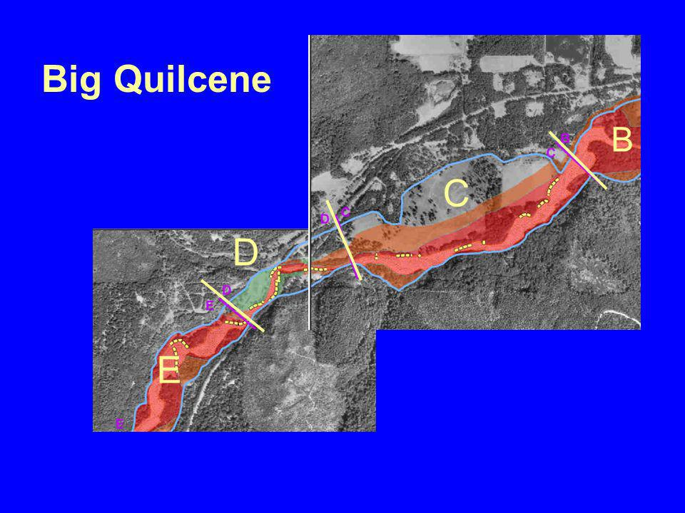 C D B E Big Quilcene