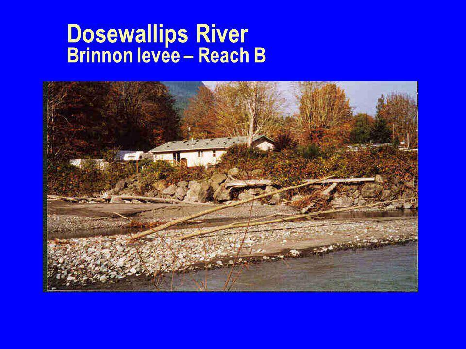 Dosewallips River Brinnon levee – Reach B