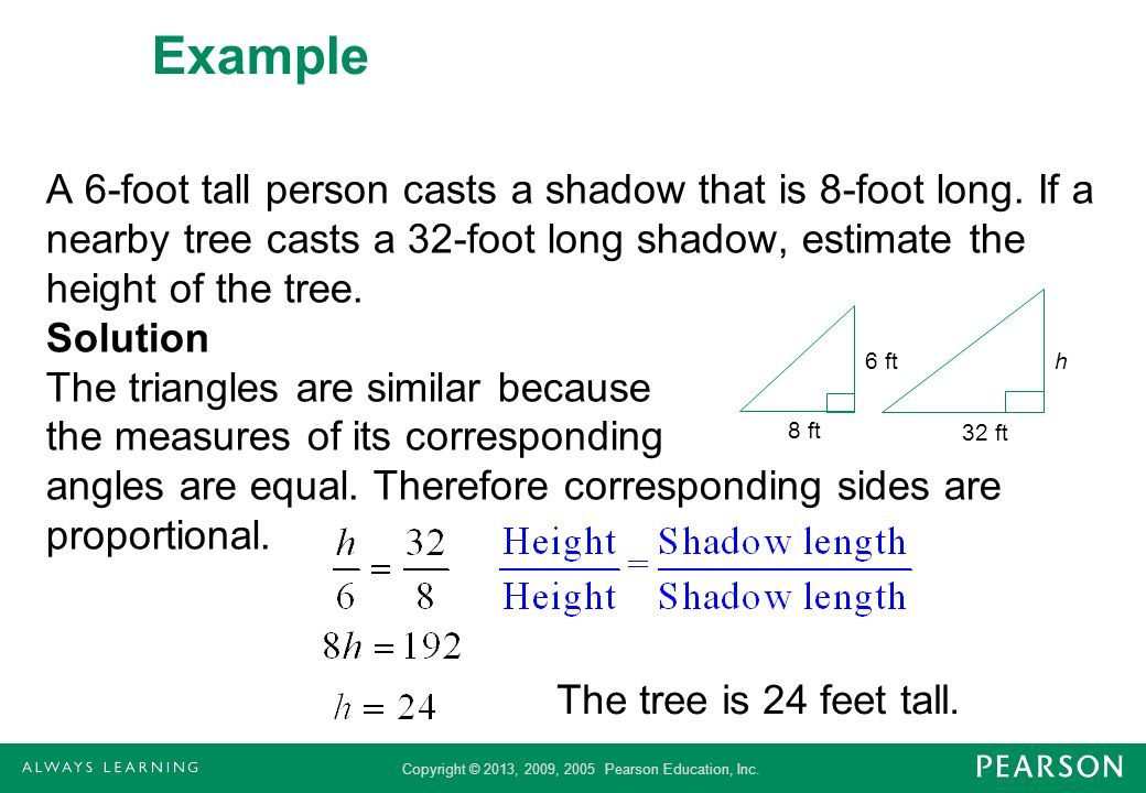 Copyright © 2013, 2009, 2005 Pearson Education, Inc. Example A 6-foot tall person casts a shadow that is 8-foot long. If a nearby tree casts a 32-foot