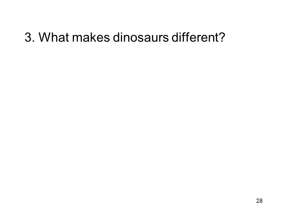 28 3. What makes dinosaurs different?