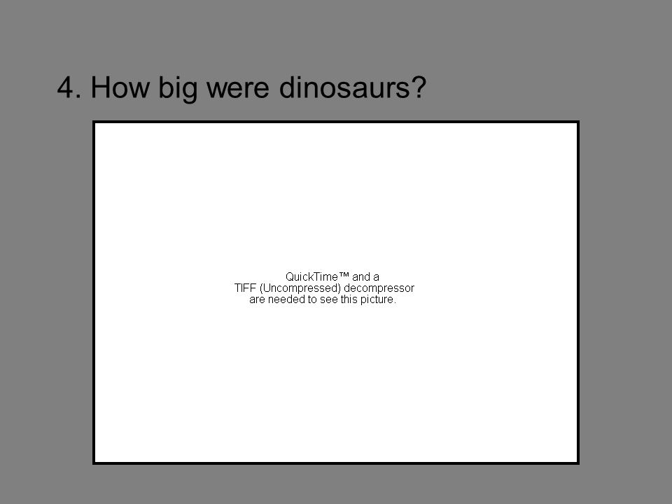 4. How big were dinosaurs?