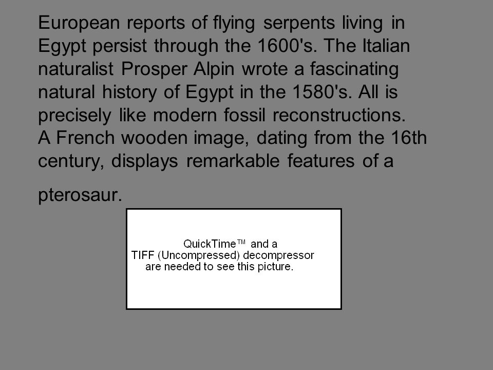 European reports of flying serpents living in Egypt persist through the 1600's. The Italian naturalist Prosper Alpin wrote a fascinating natural histo