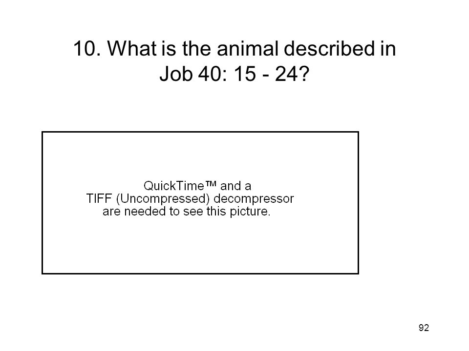 92 10. What is the animal described in Job 40: 15 - 24?