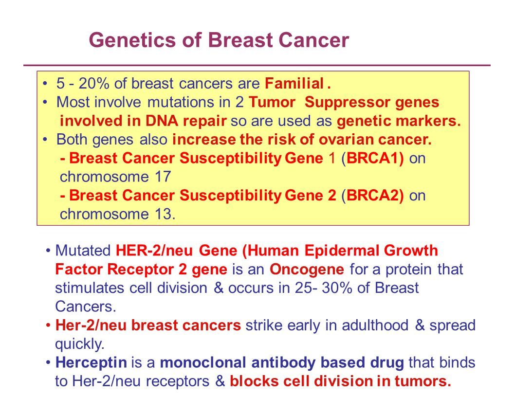 Genetics of Breast Cancer 5 - 20% of breast cancers are Familial. Most involve mutations in 2 Tumor Suppressor genes involved in DNA repair so are use