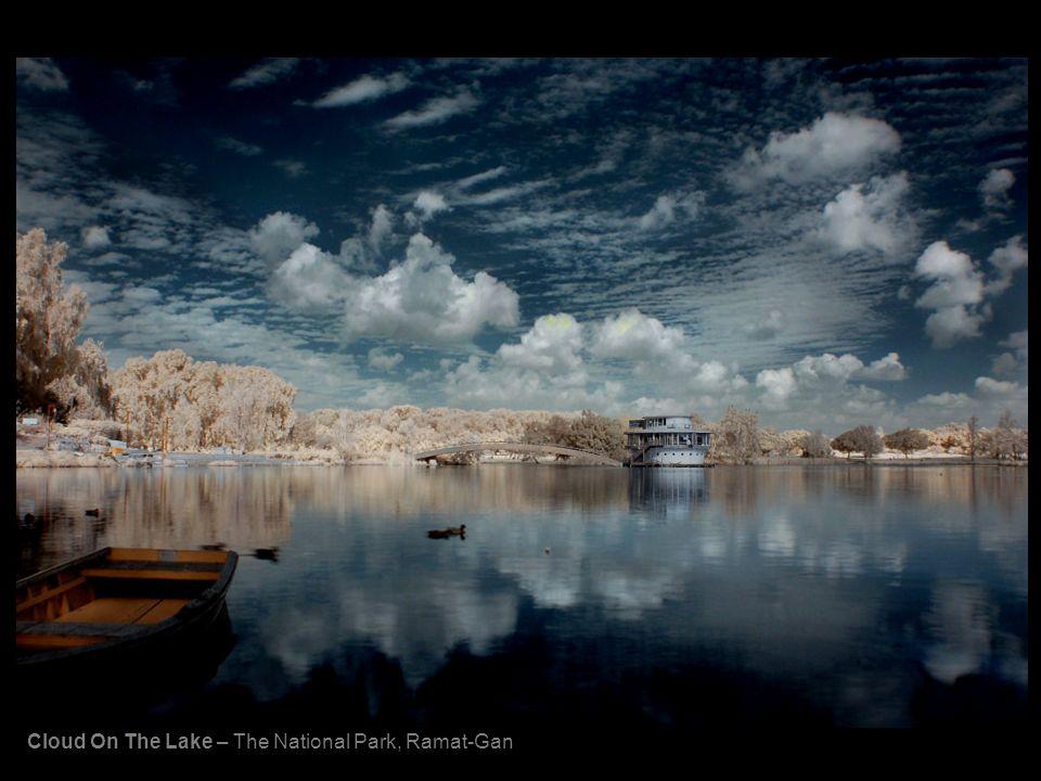 Cloud On The Lake – The National Park, Ramat-Gan