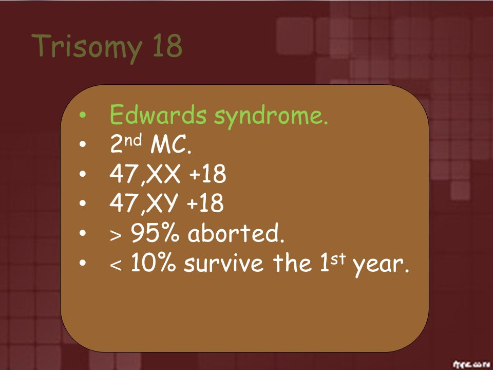 Trisomy 18 Edwards syndrome. 2 nd MC. 47,XX +18 47,XY +18 ˃ 95% aborted. ˂ 10% survive the 1 st year.