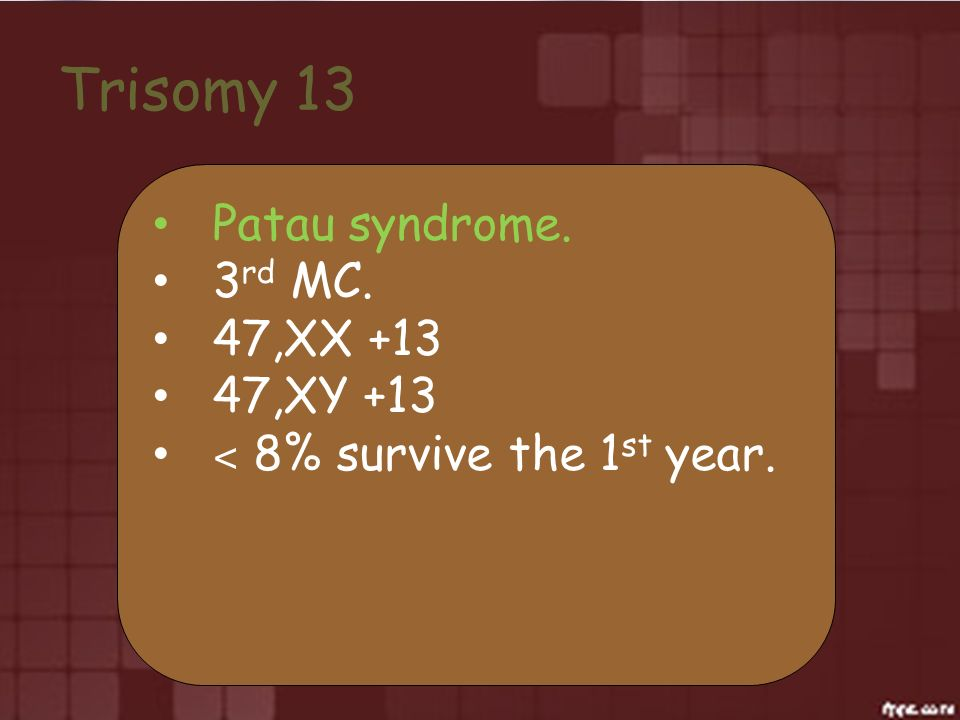 Trisomy 13 Patau syndrome. 3 rd MC. 47,XX +13 47,XY +13 ˂ 8% survive the 1 st year.