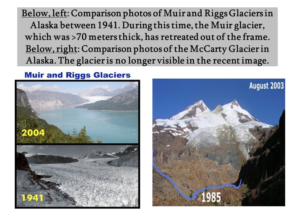 Below, left: Comparison photos of Muir and Riggs Glaciers in Alaska between 1941. During this time, the Muir glacier, which was >70 meters thick, has