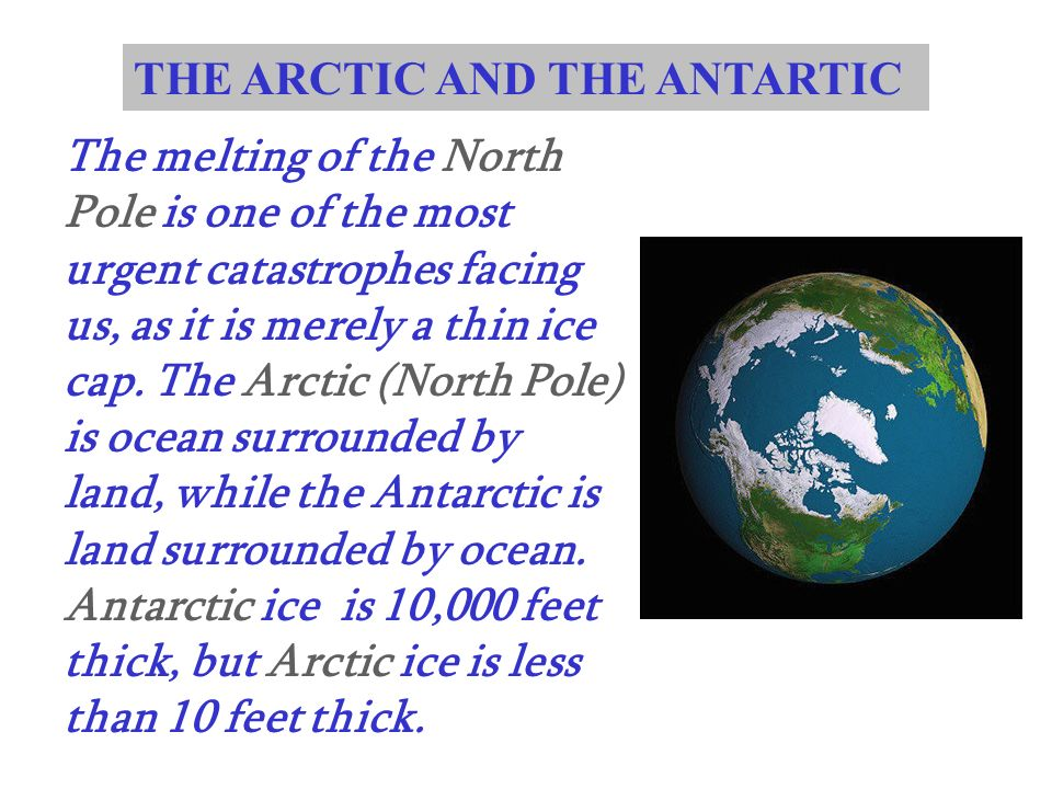 THE ARCTIC AND THE ANTARTIC The melting of the North Pole is one of the most urgent catastrophes facing us, as it is merely a thin ice cap. The Arctic