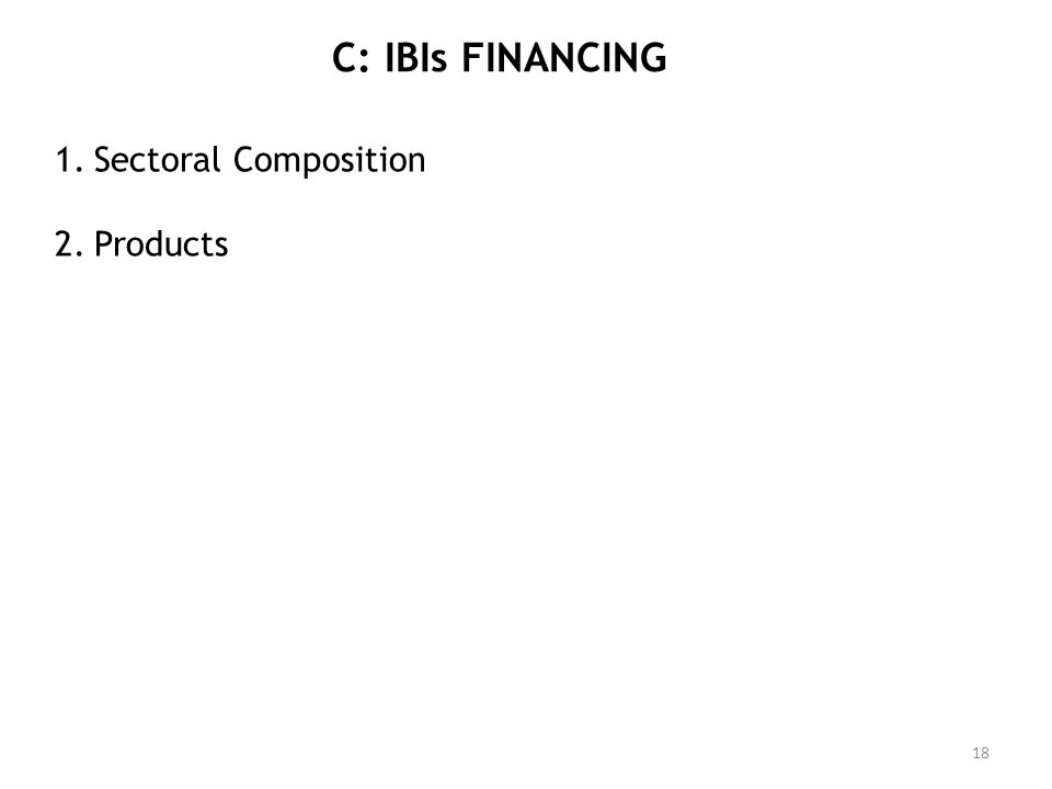 C: IBIs FINANCING 1.Sectoral Composition 2.Products 18