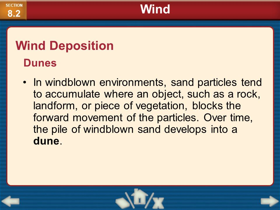 In windblown environments, sand particles tend to accumulate where an object, such as a rock, landform, or piece of vegetation, blocks the forward mov