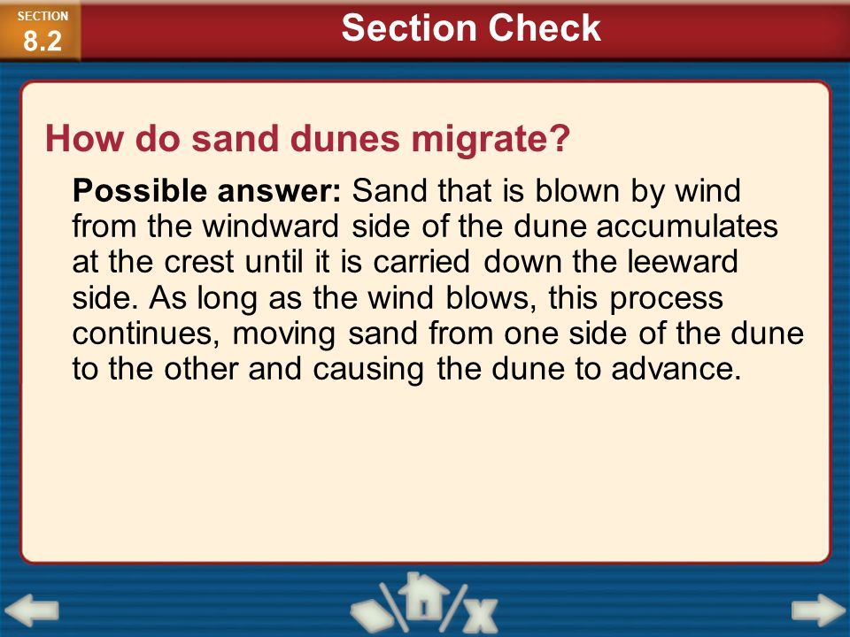 How do sand dunes migrate? Possible answer: Sand that is blown by wind from the windward side of the dune accumulates at the crest until it is carried
