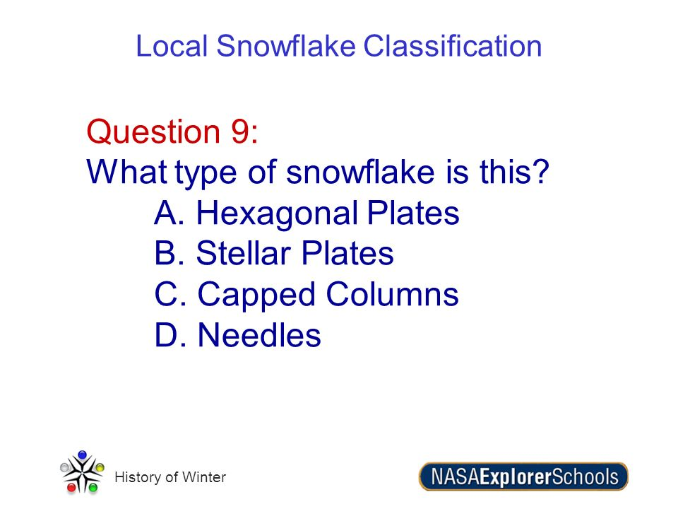 History of Winter Question 9: What type of snowflake is this? A. Hexagonal Plates B. Stellar Plates C. Capped Columns D. Needles Local Snowflake Class