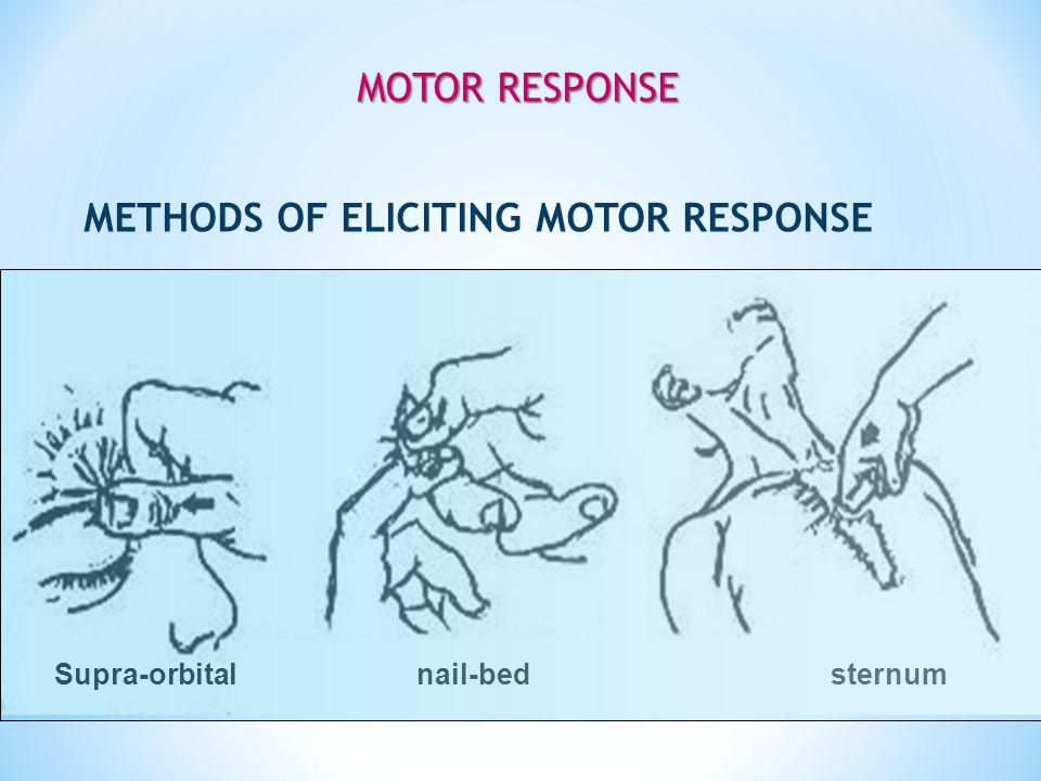 Supra-orbital nail-bed sternum METHODS OF ELICITING MOTOR RESPONSE MOTOR RESPONSE MOTOR RESPONSE