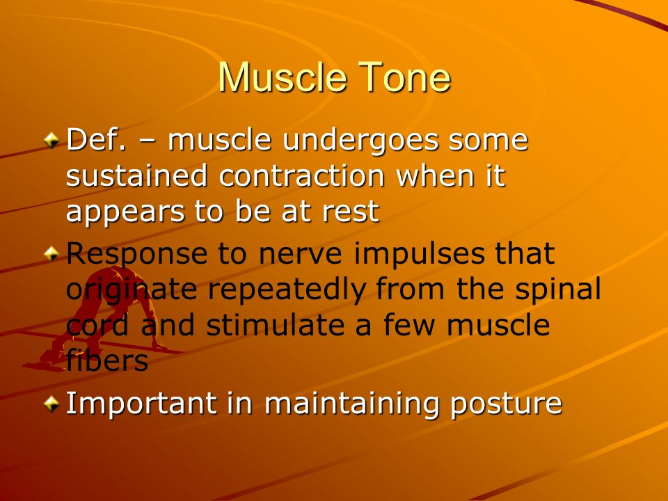 Muscle Tone Def. – muscle undergoes some sustained contraction when it appears to be at rest Response to nerve impulses that originate repeatedly from