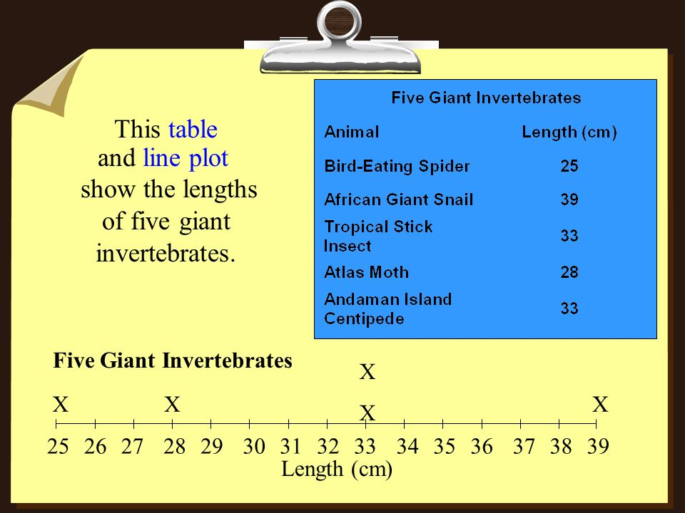 This table and line plot 252627282930313233343536373839 XX XXXX X Five Giant Invertebrates Length (cm) show the lengths of five giant invertebrates.