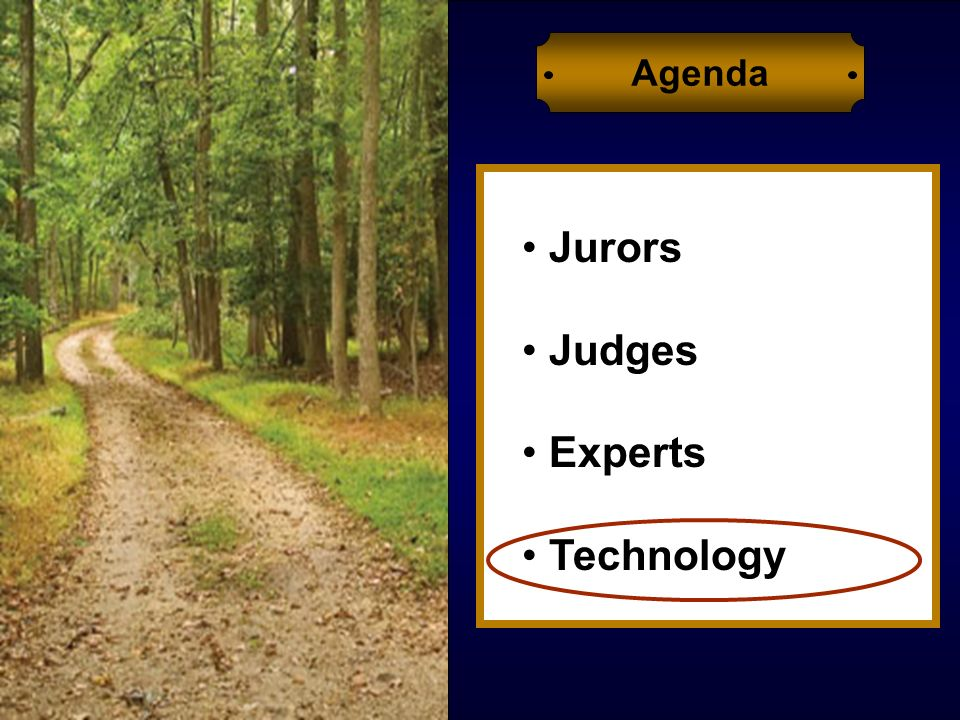 Jurors Judges Experts Technology Agenda