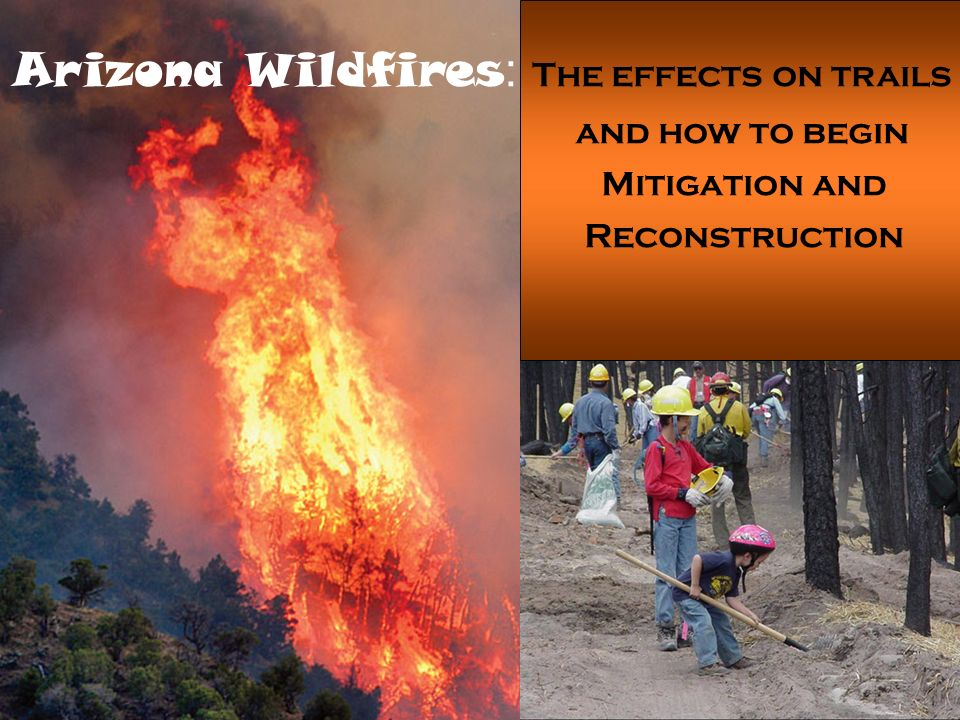 Arizona Wildfires : The effects on trails and how to begin Mitigation and Reconstruction