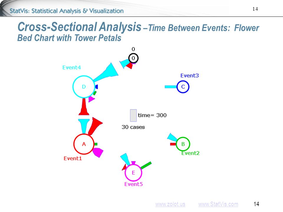www.zolot.uswww.zolot.us www.StatVis.com 14www.StatVis.com 14 Cross-Sectional Analysis –Time Between Events: Flower Bed Chart with Tower Petals