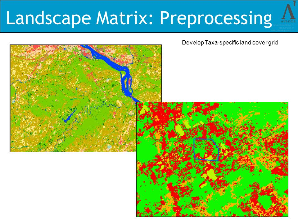 Landscape Matrix: Preprocessing Develop Taxa-specific land cover grid