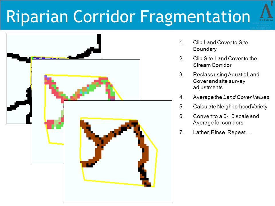 Riparian Corridor Fragmentation 1.Clip Land Cover to Site Boundary 2.Clip Site Land Cover to the Stream Corridor 3.Reclass using Aquatic Land Cover and site survey adjustments 4.Average the Land Cover Values 5.Calculate NeighborhoodVariety 6.Convert to a 0-10 scale and Average for corridors 7.Lather, Rinse, Repeat….