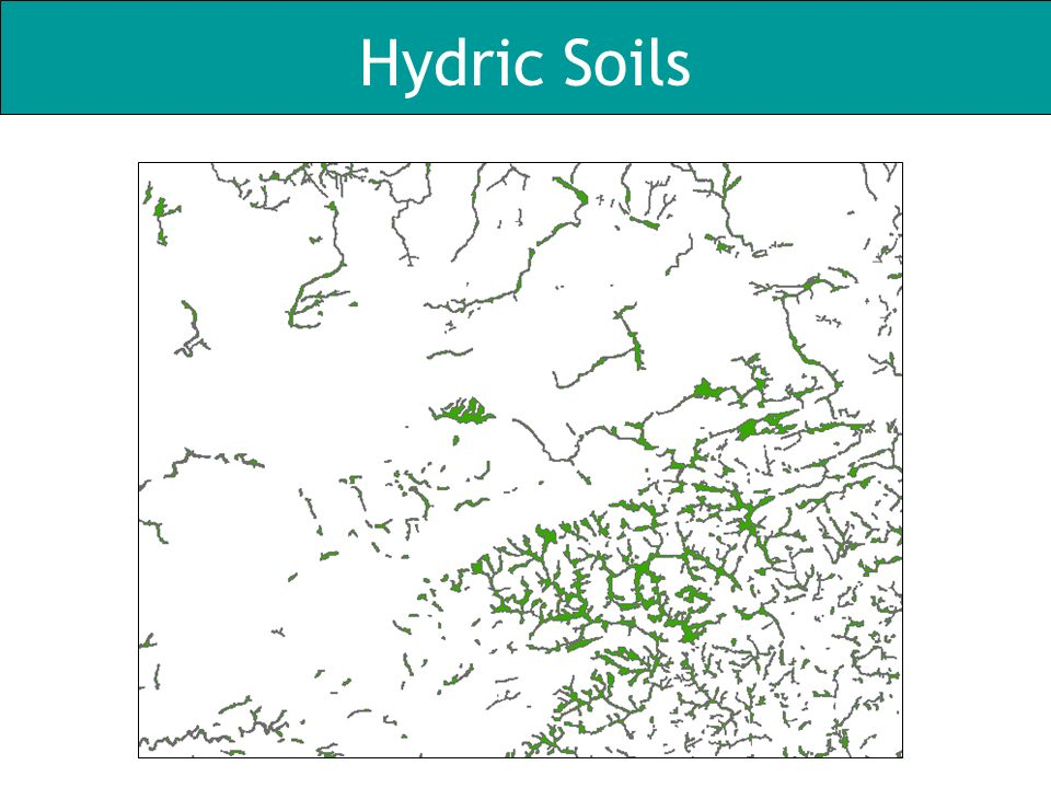 Hydric Soils