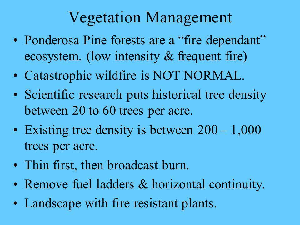 Vegetation Management Ponderosa Pine forests are a fire dependant ecosystem.