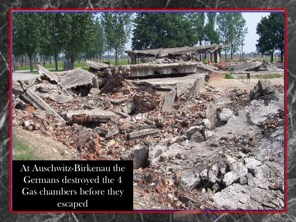 At Auschwitz-Birkenau the Germans destroyed the 4 Gas chambers before they escaped