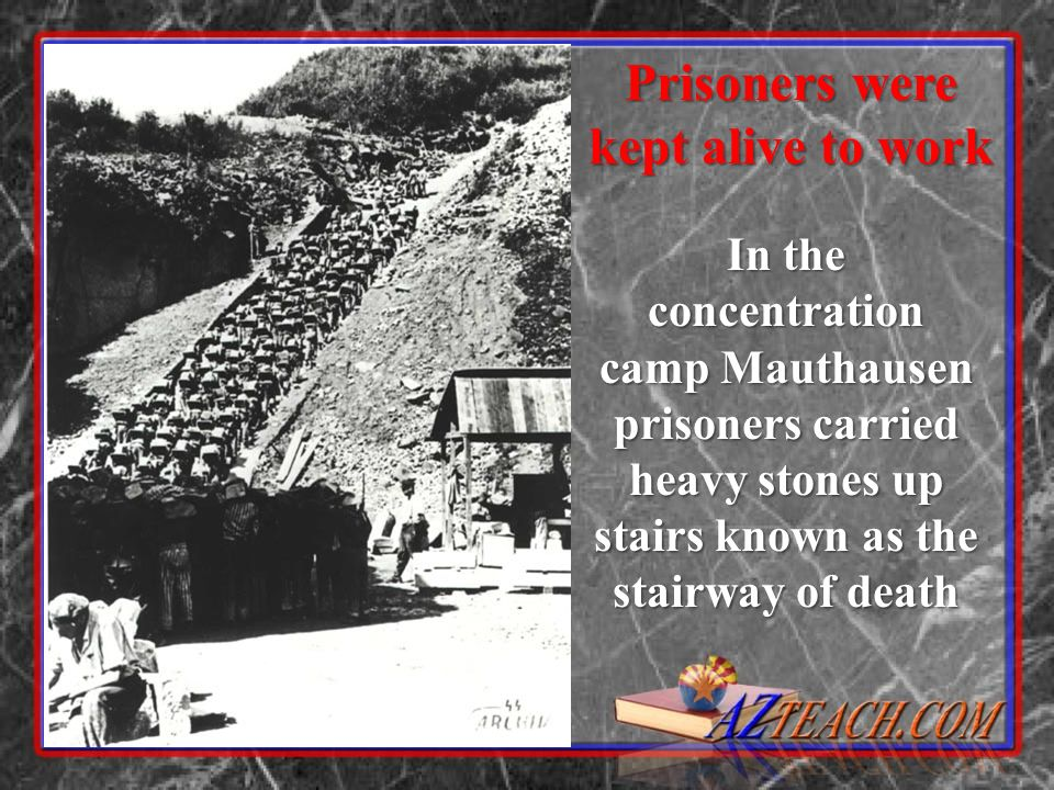 Prisoners were kept alive to work In the concentration camp Mauthausen prisoners carried heavy stones up stairs known as the stairway of death