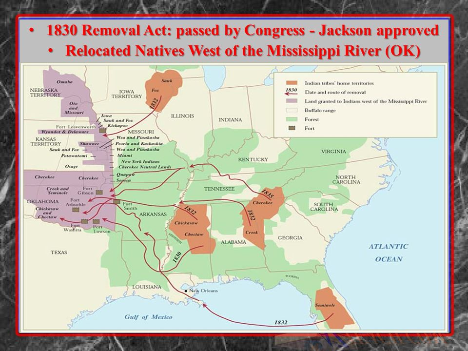 1830 Removal Act: passed by Congress - Jackson approved 1830 Removal Act: passed by Congress - Jackson approved Relocated Natives West of the Mississippi River (OK) Relocated Natives West of the Mississippi River (OK)