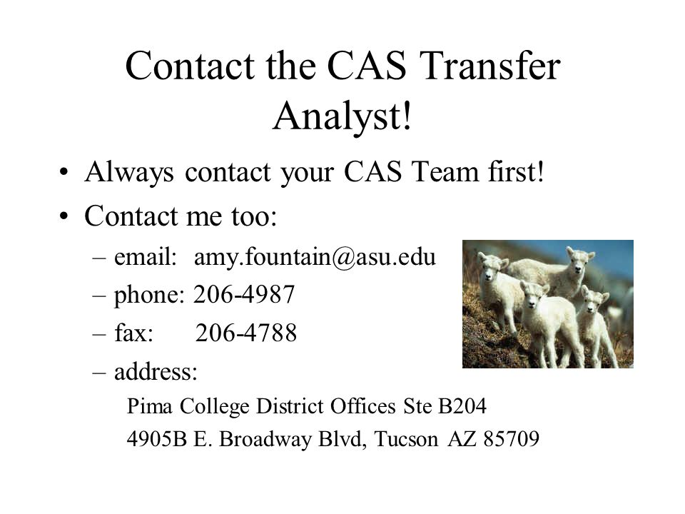 Contact the CAS Transfer Analyst. Always contact your CAS Team first.