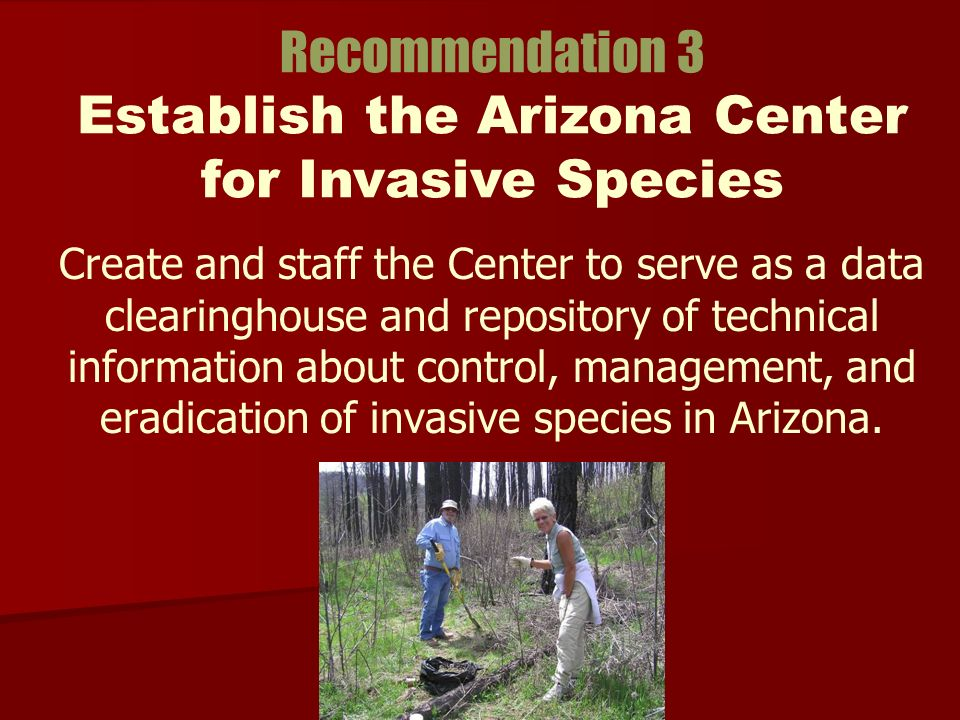 Create and staff the Center to serve as a data clearinghouse and repository of technical information about control, management, and eradication of invasive species in Arizona.