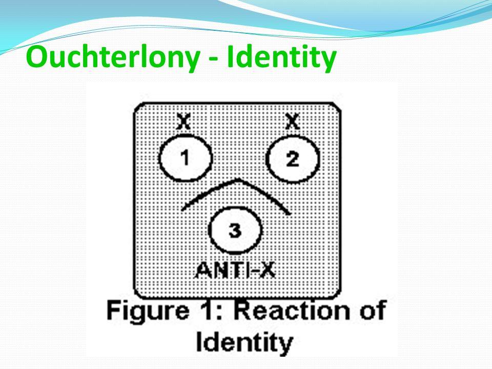 Ouchterlony - Identity