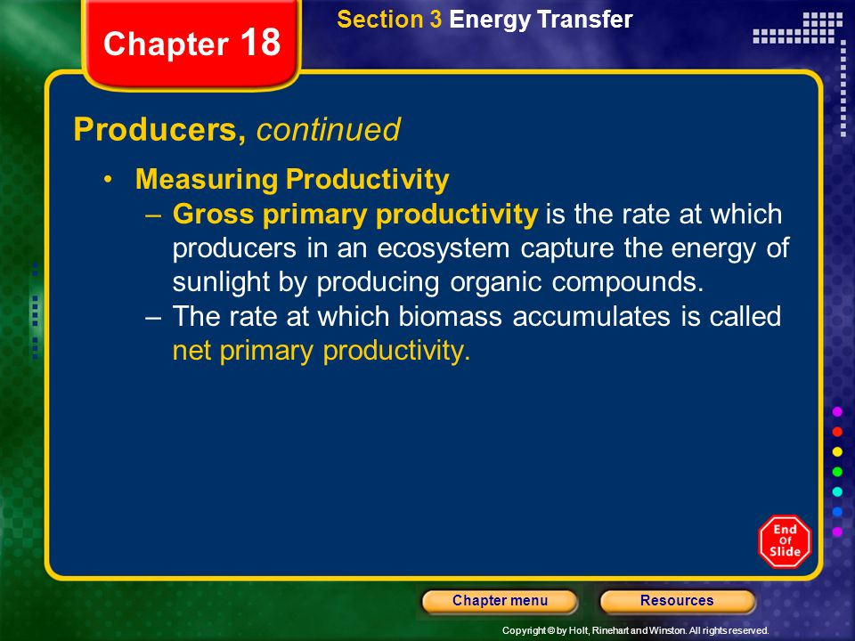 Copyright © by Holt, Rinehart and Winston. All rights reserved. ResourcesChapter menu Section 3 Energy Transfer Chapter 18 Producers Most producers ar