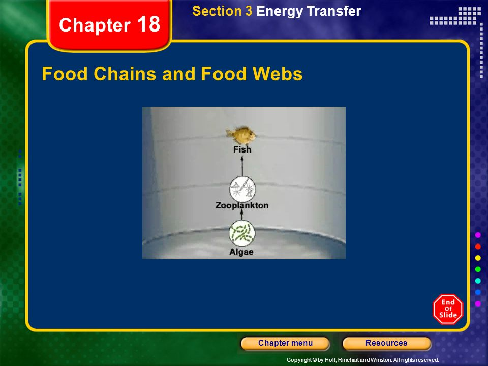 Copyright © by Holt, Rinehart and Winston. All rights reserved. ResourcesChapter menu Section 3 Energy Transfer Chapter 18 Energy Flow Food Chains and